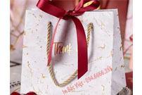 In túi giấy đựng quà tặng tại Bắc Việt – uy tín và chất lượng