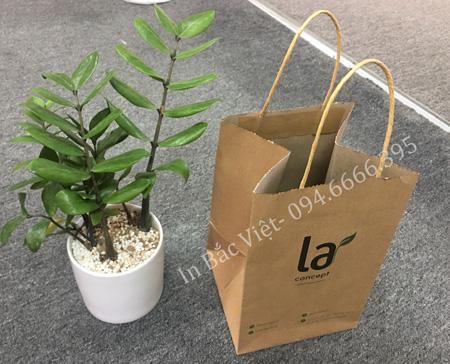 Mẫu túi giấy kraft đựng cây cảnh